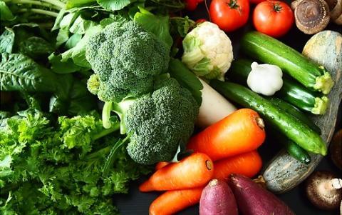 【ふるさと納税限定】道の駅さかい 採れたて野菜お試しセット