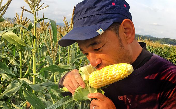 ANAのふるさと納税 | 静岡県 森町の大人気!しんちゃん農園の甘~い ...
