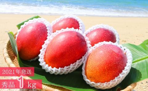 「完熟アップルマンゴー」(秀品・約1kg)
