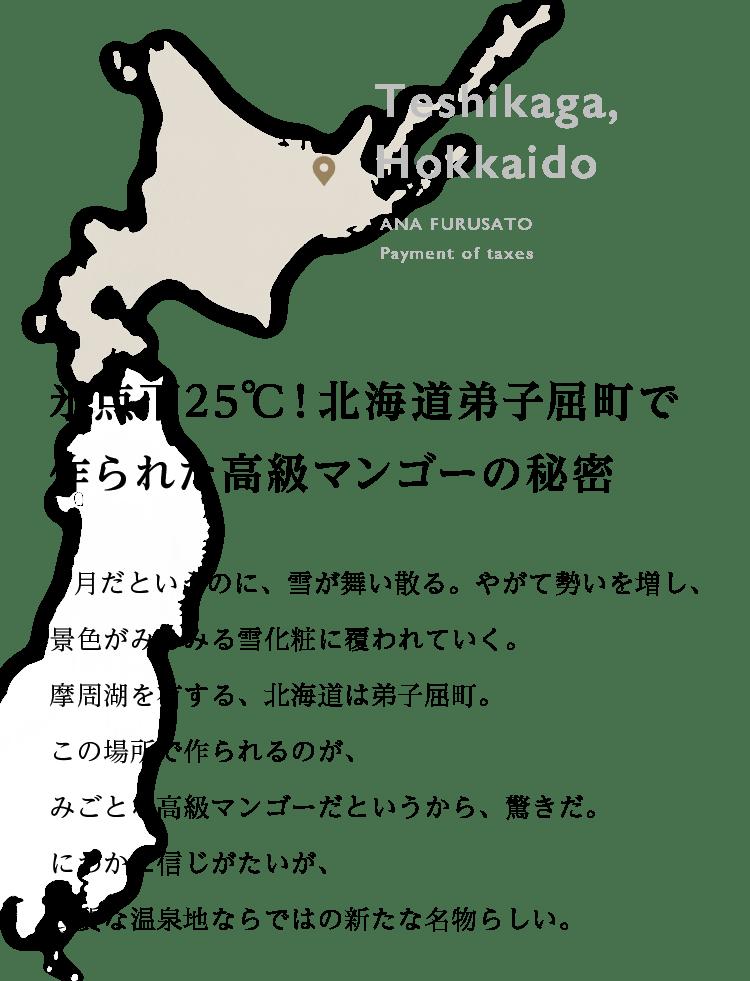 北海道 マンゴー