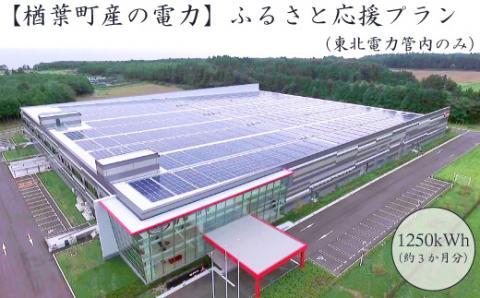 021a002 【楢葉町産の電力】ふるさと応援プラン/1,250kWh(37,500円分相当)(東北電力管内のみ)