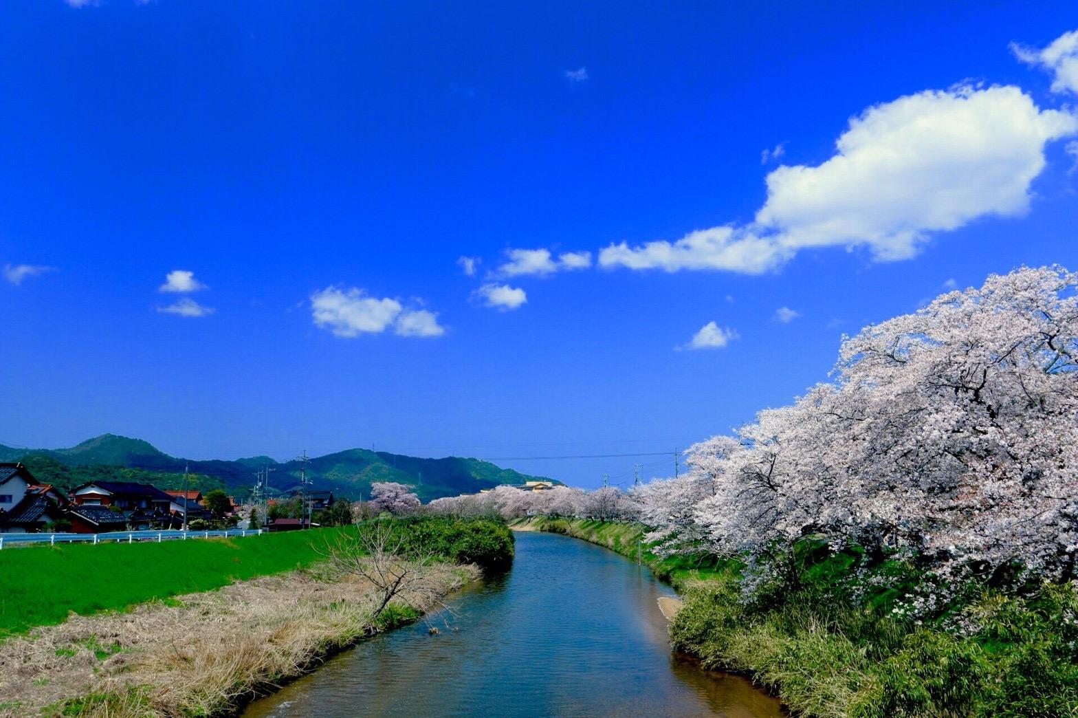 鳥取県南部町