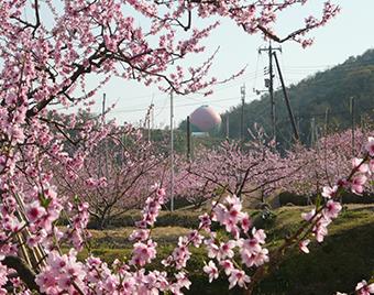 岡山県赤磐市